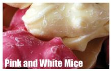 Pink and White Mice